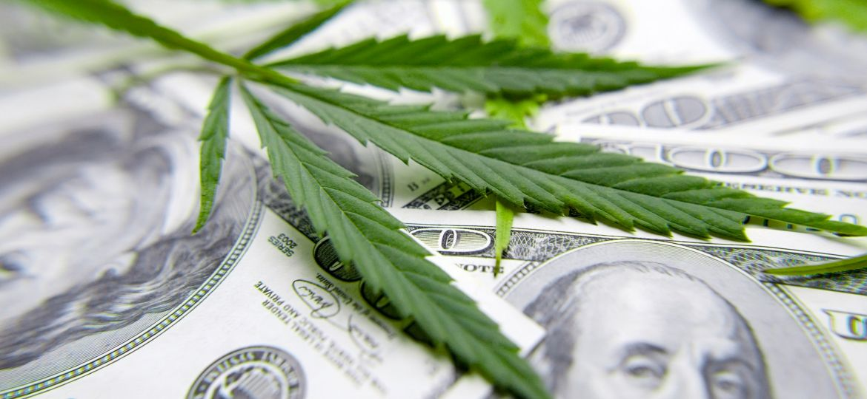cannabis-leaf-100-bills