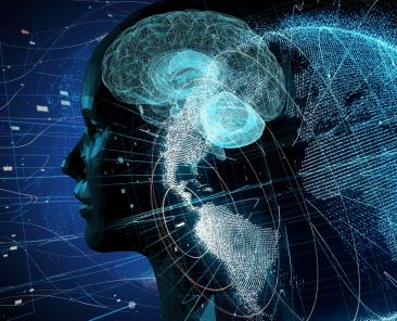 neuroscience_Adobe